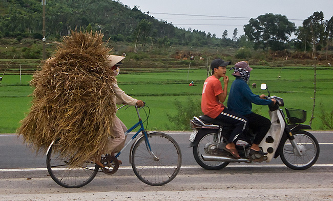 bike-with-rice